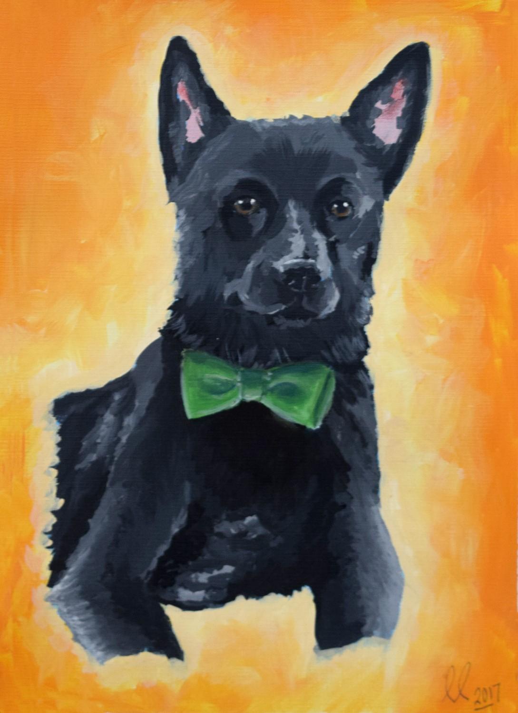 Scotty Dog portrait by Emily Coscia