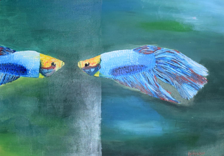 Fish Reflection by Safa Nadeem