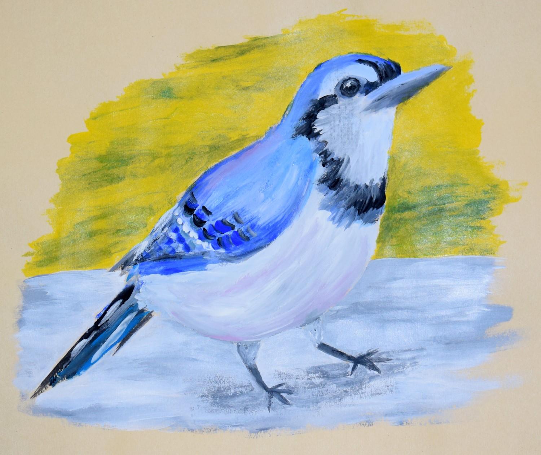 Blue Jay by Hannah Moyer