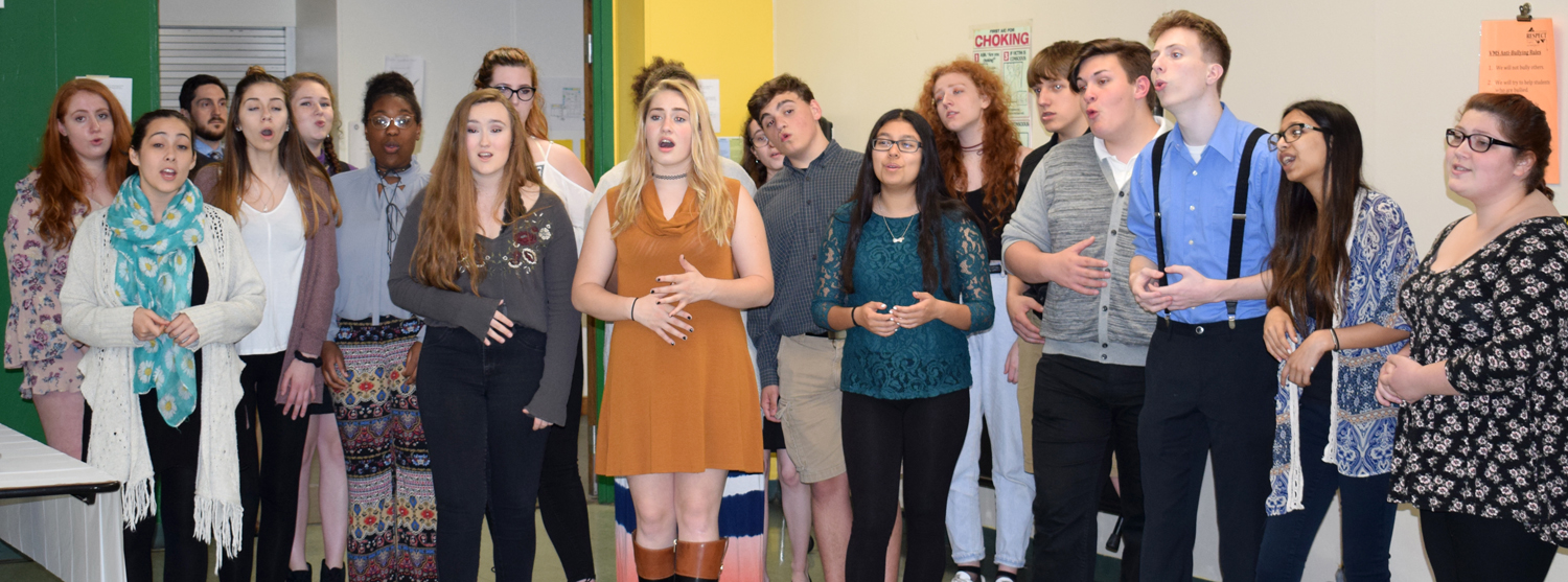 Members of Vestal High School's Bear Necessities a cappella group sing before the District Council D