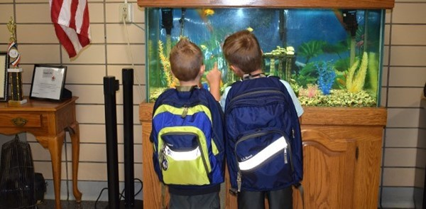 Two Kindergarten boys visit the fish swimming in the aquarium of the Clayton Avenue Elementary lobby after Kindergarten orientation.