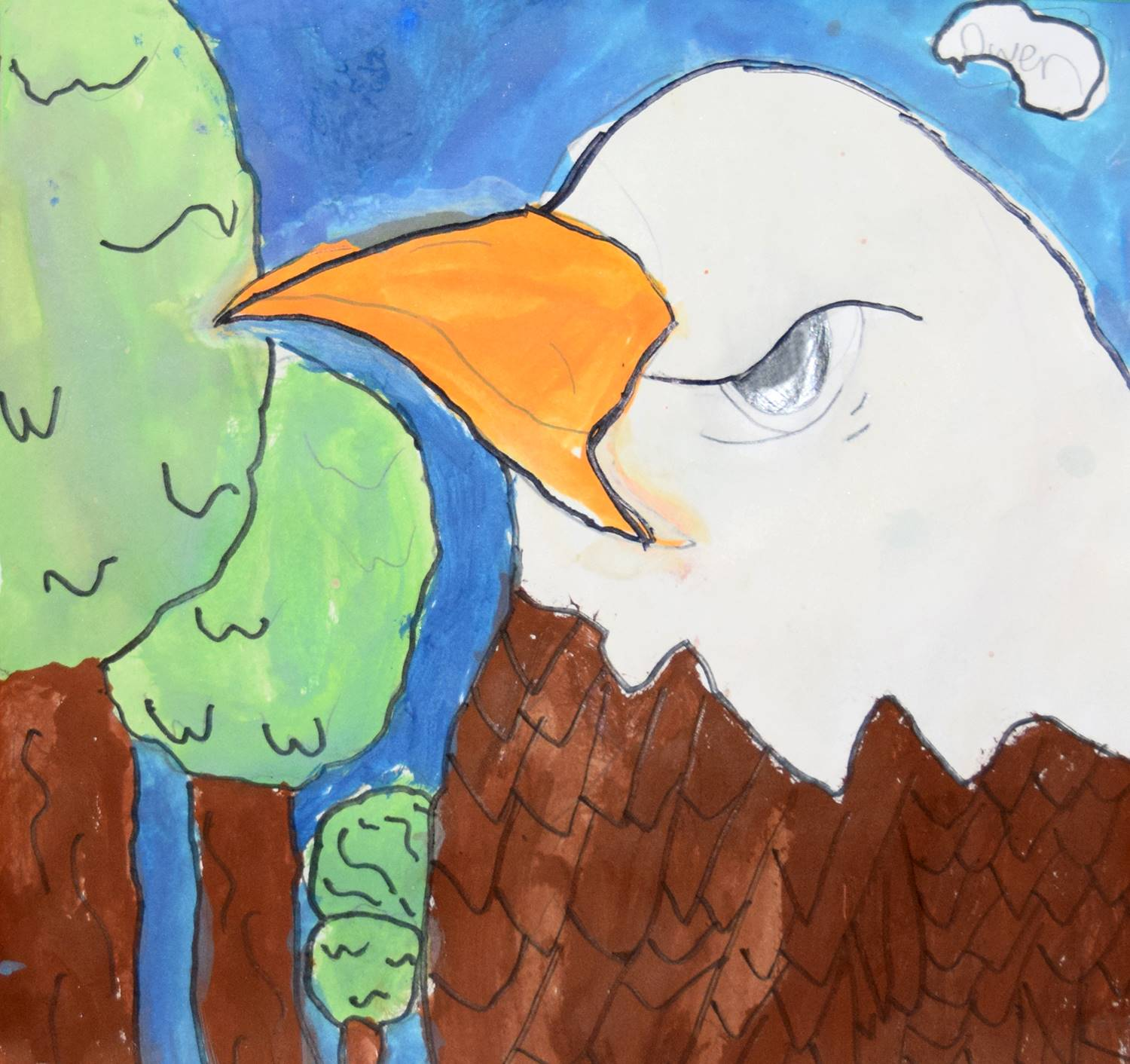 A bald eagle by Owen, a Clayton Avenue Elementary student.