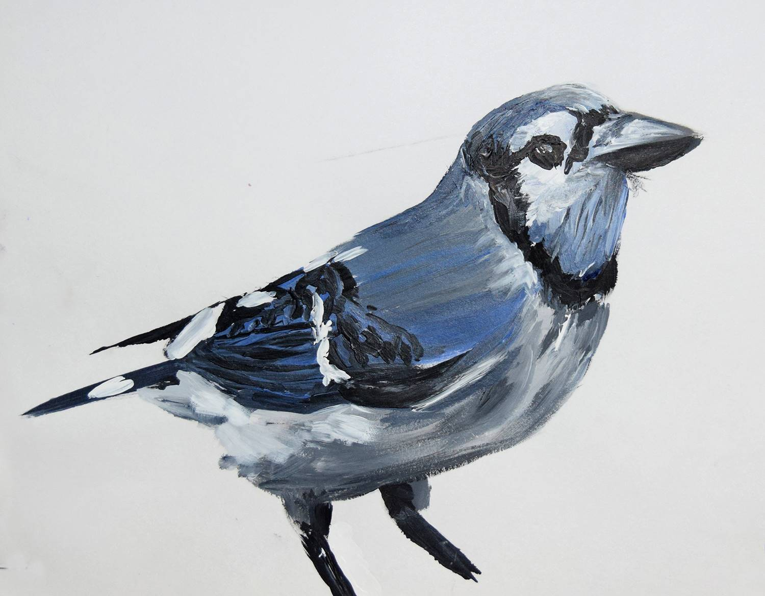 A blue jay, drawn and colored by Vestal High School student Wyatt Zindle.